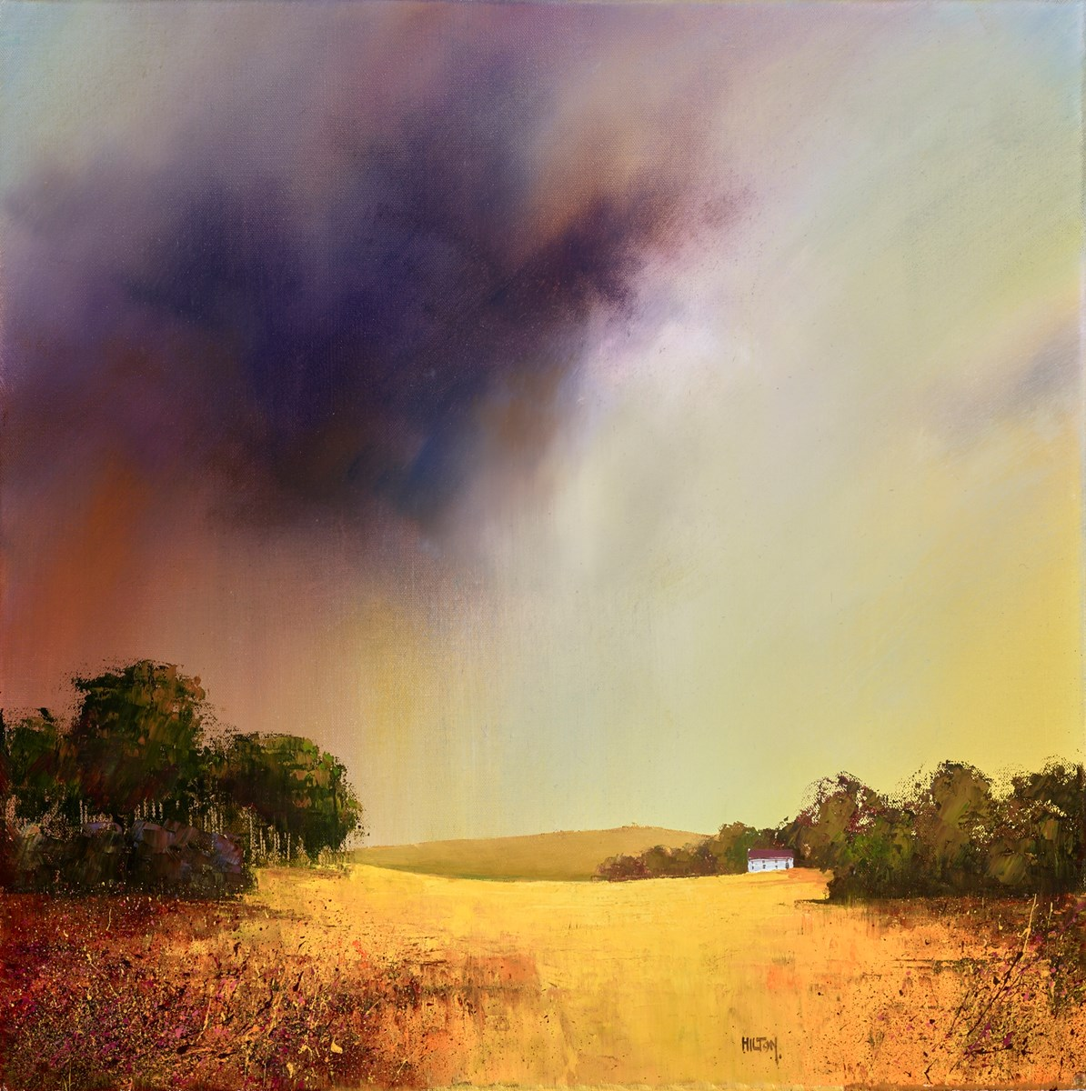 Summer Sunrise by barry hilton -  sized 24x24 inches. Available from Whitewall Galleries